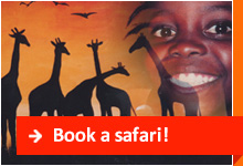 Book a safari!